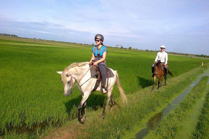 Siem Reap Happy Horse Riding