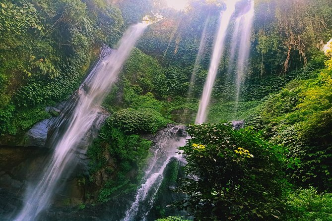 Bali day tour - exploring bali most scenic spot