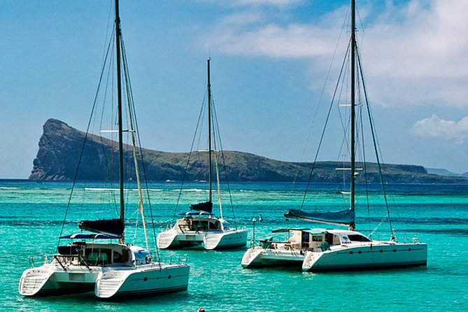 Discover a Full Day Catamaran Cruise 3 Northern Island Adventure