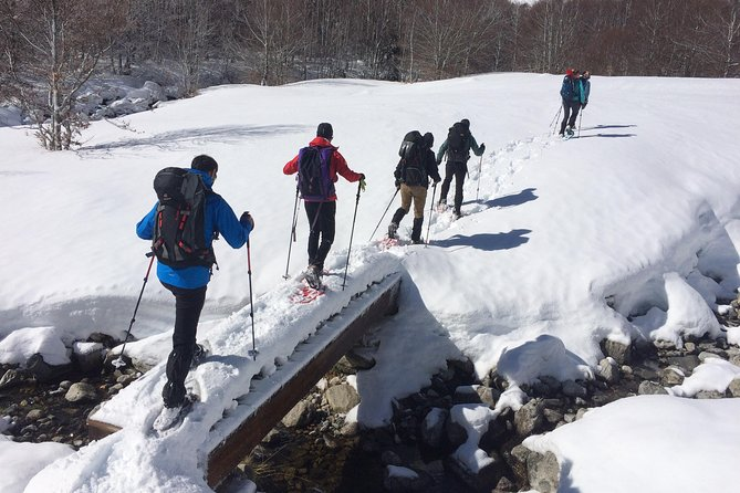 Snowshoeing in the Pyrenees from Barcelona. Premium Small Group Tour