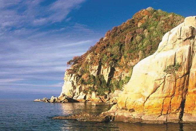 Remote Coast