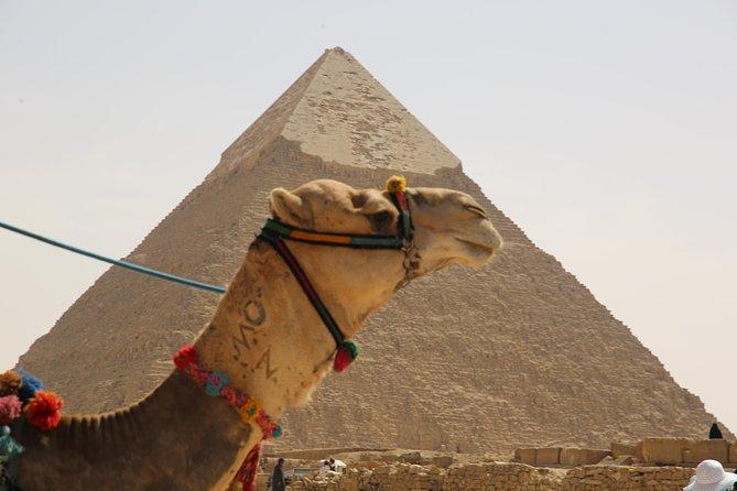 Full Day Cairo Experience