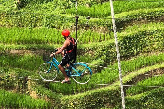 Bali Best Sightseeing Ubud Monkey Forest Rice Terrace Volcano View