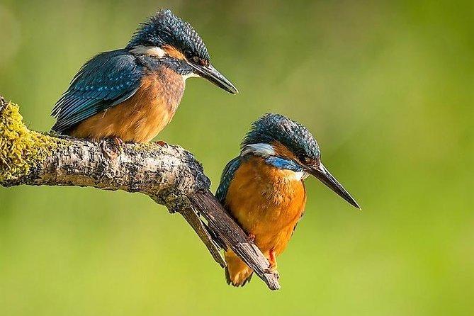 Day Tour to Anawilundawa Wetland Sanctuary