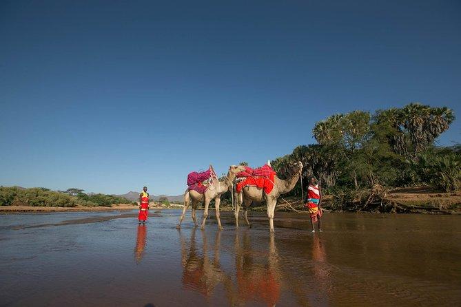4 Days - Samburu & Aberdares National Park Safari