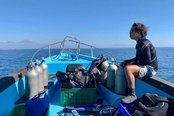 Discover Scuba Diving @ Menjangan Island