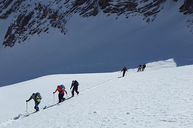 Guided alpine skiing excursion with professional guide