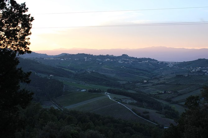 Private Medici Villa Guided Tour and Sunset Wine Tasting with Dinner
