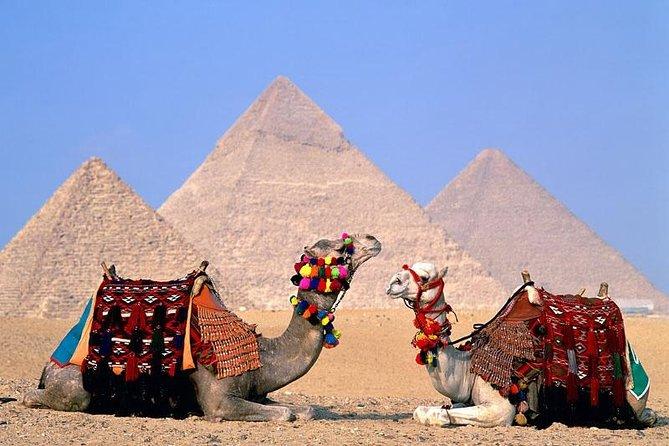 8 Days 7 Night (Cairo & Sharm Elshiekh) by flight
