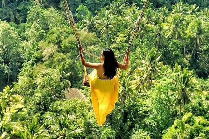 Ubud surounding private tour - monkey forest - waterfall - free wifi