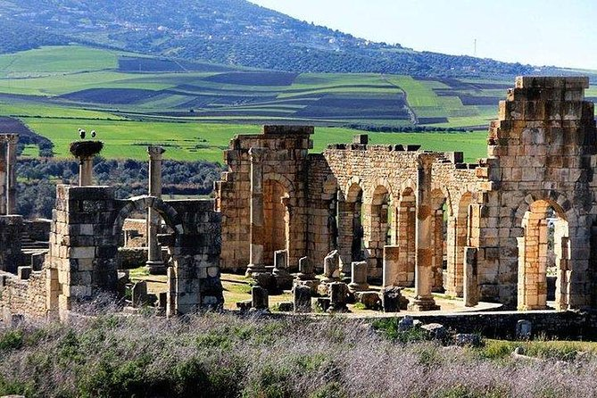 Fez to Meknes,Moulay Idriss & Volubilis (Private Day Trip)
