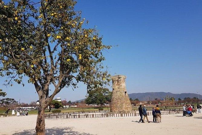 The Ancient City of Brilliant Shilla Kingdom - Gyeongju in one day( or overnite)