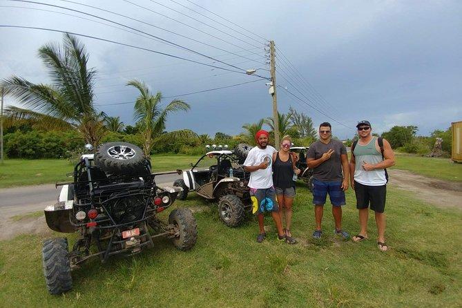 Morning buggy tour