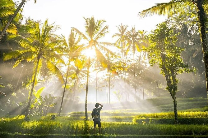 Bali Full-Day Customized Private Tours