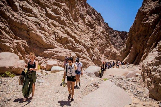 Sharm-El-Sheikh: Mount Sinai Hike & Dahab Private Tour