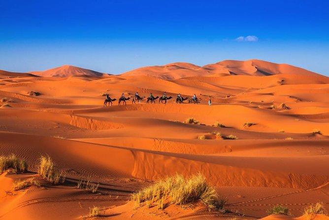 3 Day-2 Night Best Desert Tour From Marrakech & Back