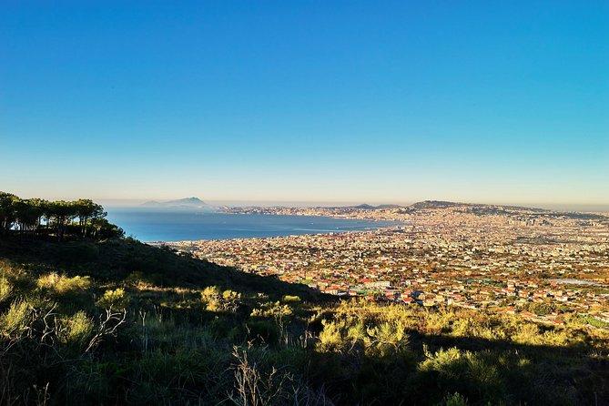 Vesuvio full wine immersion close to Naples