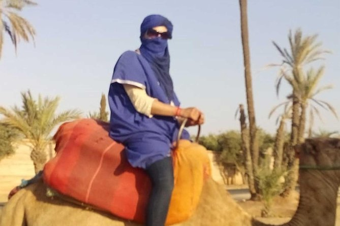 Camel Ride in Marrakech Palmerie