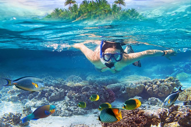 Bali Blue Lagoon Snorkeling Experience
