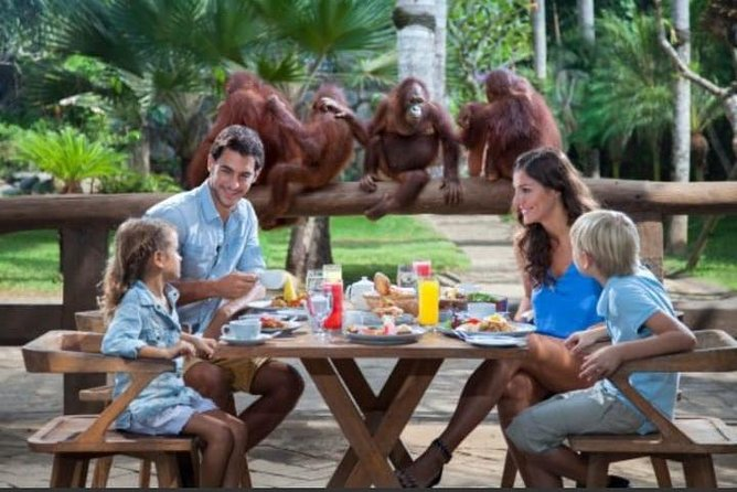 Full Day Tour - Breakfast with Orang Utan and Kintamani Tour