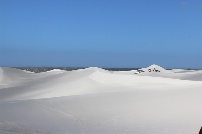 Sandboarding and Quad Biking Combo Day Tour from Cape Town photo 10