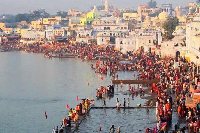 Jaipur Pushkar Same Day Tour