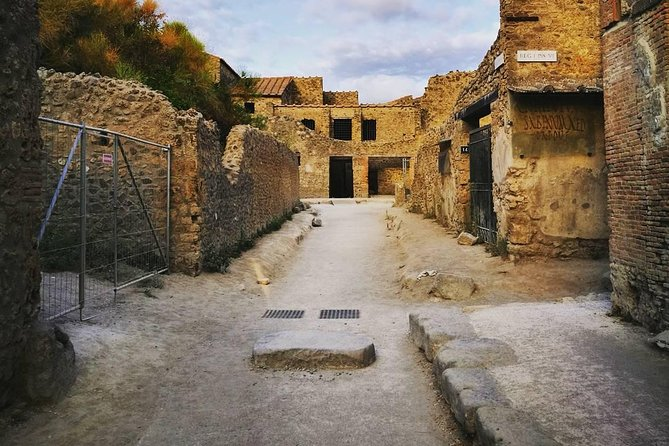Tours in Pompeii Visit the ruins guided by an Archeologist photo 7