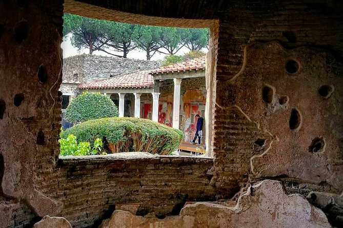 Tours in Pompeii Visit the ruins guided by an Archeologist photo 3