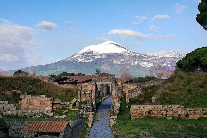 Tours in Pompeii Visit the ruins guided by an Archeologist photo 6