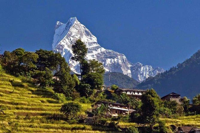Annapurna Panorama Trek - 9 Days