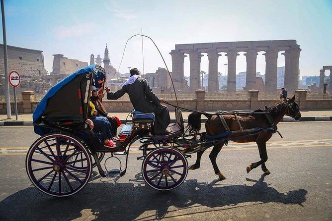 10 Days Luxury Cairo & Nile Cruise