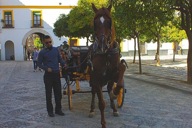 LUXExperience - Horse & Cava Car