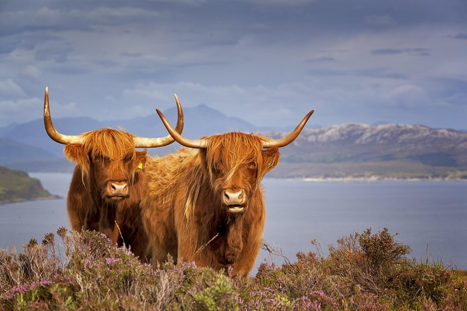 3 Day / 2 Night Scottish Highland Experience from Edinburgh photo 3