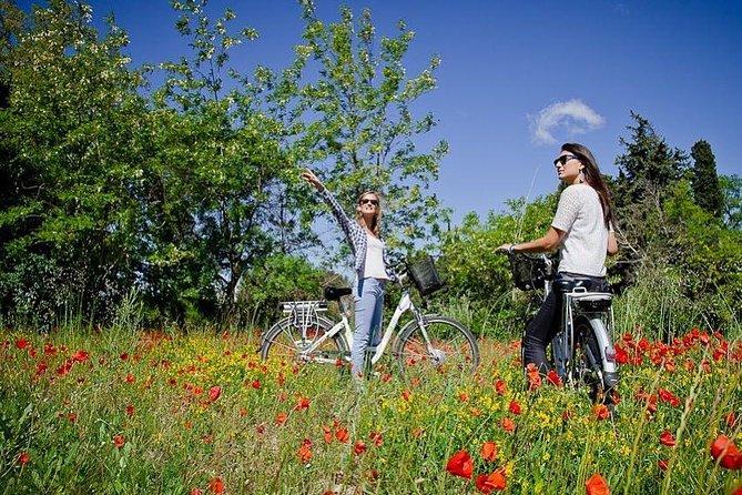Provence Electric Bike Rental from Saint-Rémy-de-Provence