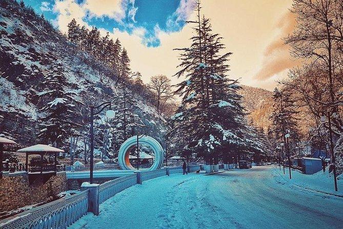 Borjomi-Bakuriani-Private day trip from Tbilisi