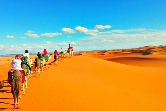Guided Desert tour from Marrakech to Fes 3Days/ 2Nights