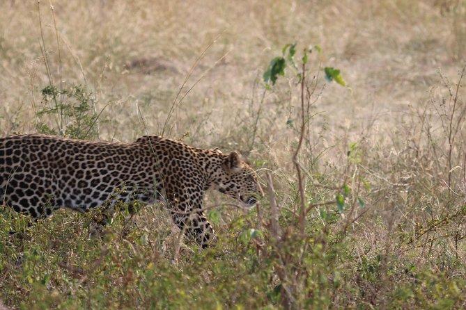 3 Days - Discover Uganda's nature