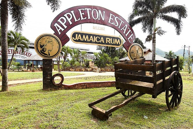 YS Falls and Appleton Rum Tour Adventure Tour from Montego Bay