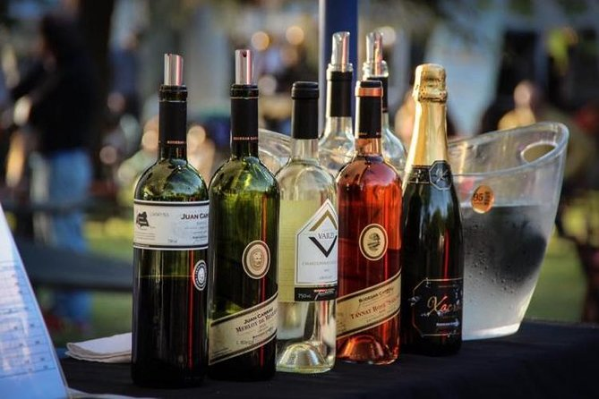 Winery Carrau Visit and Tasting