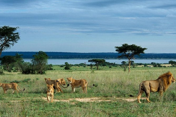 7 Days Murchison Falls and Kidepo Valley National Park