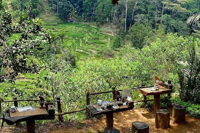 Bali Tukad Cepung Waterfall & Jungle Swing Private Day Tour