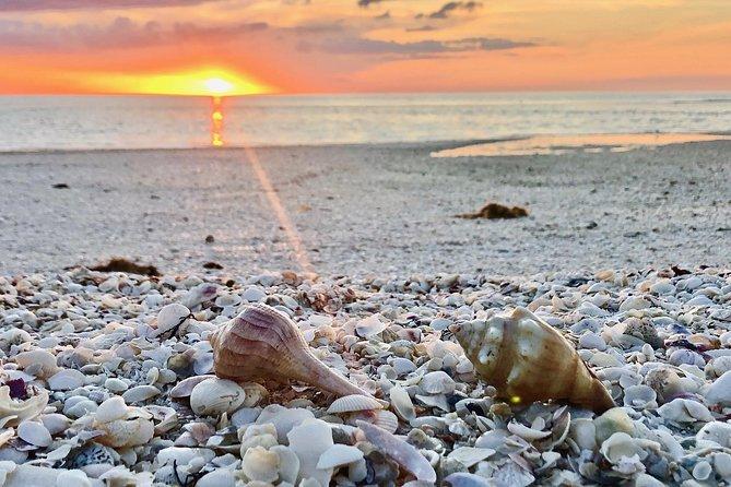 Sunset shelling