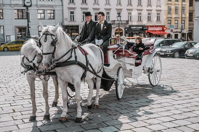 Riding Dinner - horse-carriage ride incl. food and beverages