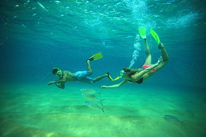 Beach Hopper Snorkeling Tour in Los Cabos photo 1