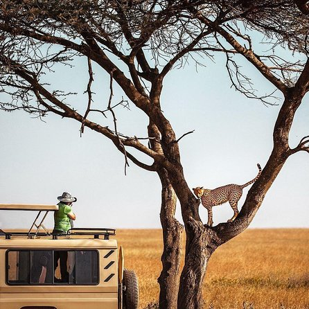 2-Day and 1 night Ngorongoro and Lake Manyara Tours