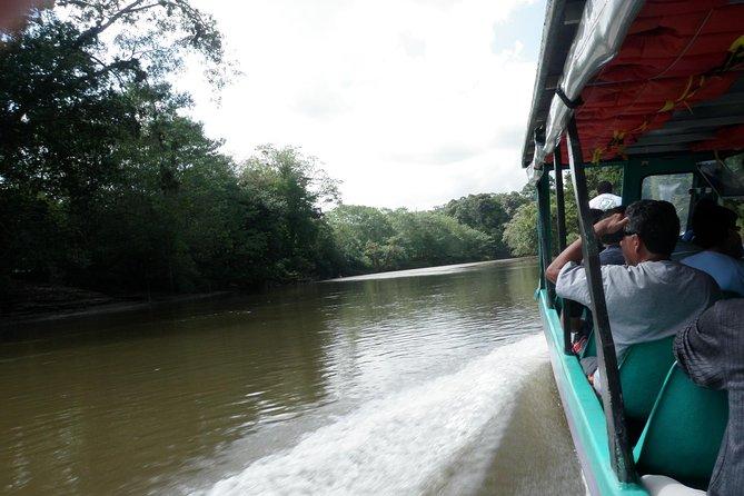 Rainforest Sarapiqui Zipline & Boat Trip From San Jose