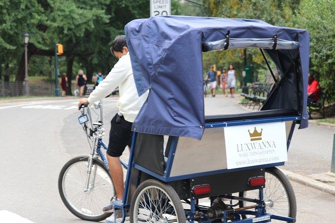 Central Park VIP Tour (All park tour tot 2 uur met onbeperkte stops) pedicab