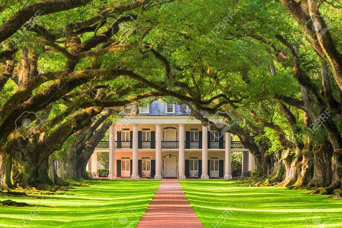 Oak Alley Plantation and Swamp Tour Combo