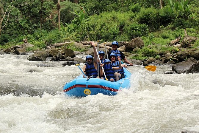Ayung River Rafting and Ulun Danu Temple - Tanah Lot Temple Tour