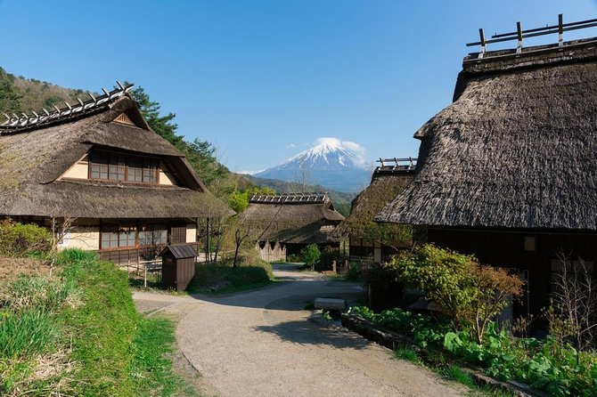 9-hour Mt. Fuji & Hakone Tour, with Private Car from Tokyo up-to Hakone Area